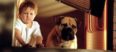 SBT exibe o filme Spot: Um Cão da Pesada na Tela de Sucessos